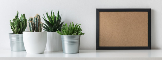 Modern room decoration. Various cactus and succulent plants in different pots. Mock-up with a black frame.