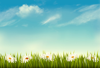 Spring nature background with green grass and sky. Vector.
