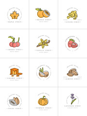 Vector set design colorful templates logo and emblems - syrups and toppings. Food icon. Logos in trendy linear style isolated on white background.