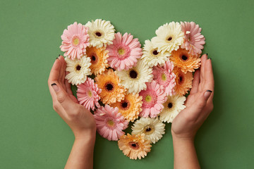 Photo sur Plexiglas Gerbera Hands of girl holding a heart of gerbera flowers