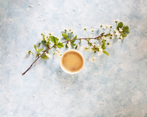 Cup of black coffee and white flowers and blossom branch on light blue background