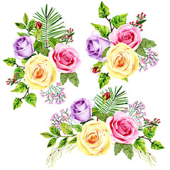 watercolor bouquets of roses on the white background