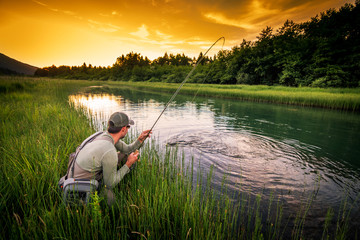 Ingelijste posters Vissen Fly fisherman fishing pike in river