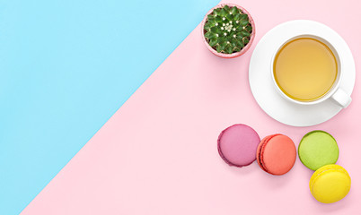 Flat lay photo of office desk with   tea mug, cactus, macaroons pink and blue background