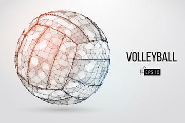 Silhouette of a volleyball ball. Dots, lines, tr