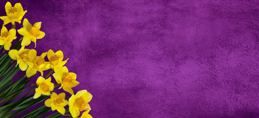 Wide Screen purple background with flowers