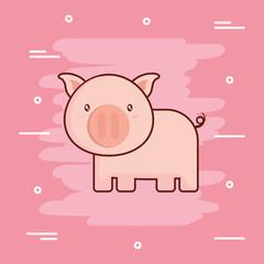 cute pig icon image