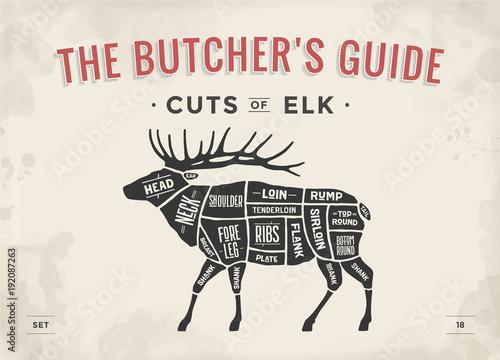 500_F_192087263_GyPh5IifbpH0S6XGSfBunNkFuTp4qfHw cut of meat set poster butcher diagram, scheme elk vintage