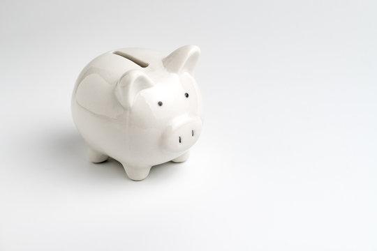 Finance, saving money, white piggy bank on seamless white background