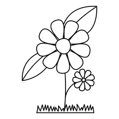 flower and leafs cultivated vector illustration design