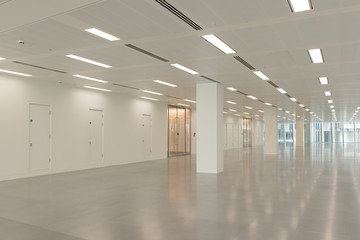 Empty Office Interior with Illuminated Ceiling LIghts