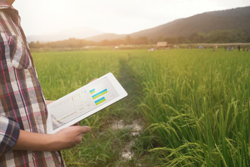 agriculture technology, farmer man using tablet computer on harvest field.