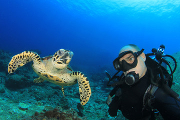 Hawksbill Sea Turtle and Scuba Diver (selfie)