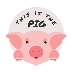 This is the pig with cute face pig and circle vector design