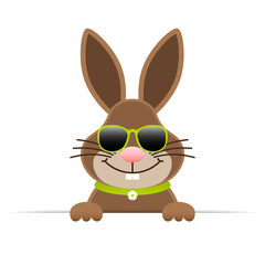 Single Easter Bunny Sunglasses Horizontal Banner Green
