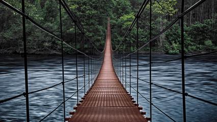 Beginning of an adventure, road into the jungle. Suspension bridge. Landscape view of Long Steel Suspension bridge above the river. balance