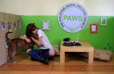 """A pet lover hugs a shelter dogs during a """"Date with Dogs"""" inside the Philippine Animal Welfare Society (PAWS) headquarters in Quezon city, metro Manila"""