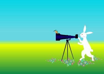 鳥獣戯画っぽいウサギがカワセミを撮影する望遠レンズにカワセミが止まって笑ってしまう