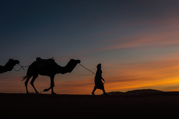 Keuken foto achterwand Roze Silhouette of caravan in desert Sahara, Morocco with beautiful and colorful sunset in background