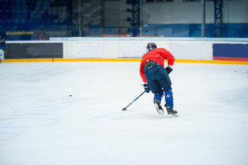 Professional ice hockey player in red on the ice