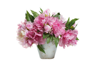 Bouquet of pink peonies in a vase isolated on white background.