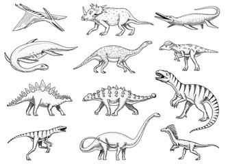 Dinosaurs set, Tyrannosaurus rex, Triceratops, Barosaurus, Diplodocus, Velociraptor, Triceratops, Stegosaurus, skeletons, fossils. Prehistoric reptiles, Animal Hand drawn vector.