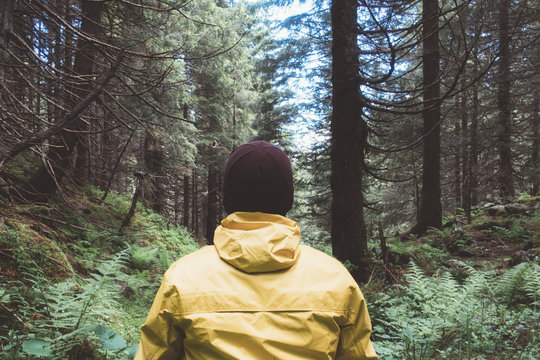 Man in yellow jaket in wild forest. Travel and adventure concept. Mountains landscape photography