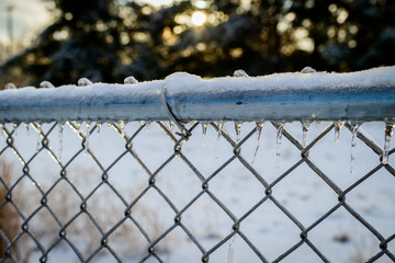 icy fence icicles