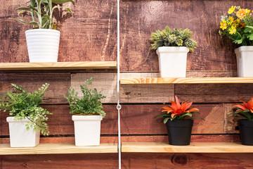Retro home decor, flowers and on a wall shelf