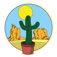 Cactus in pot on desert