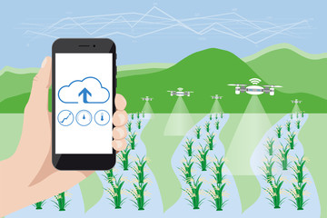 Wall Mural - Internet of things in agriculture. Smart farm with wireless control. Vector illustration.