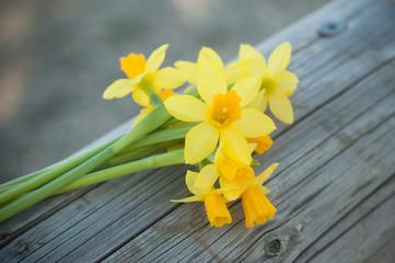 Papiers peints Narcisse bouquet de narcisses coupées sur une barrière en bois