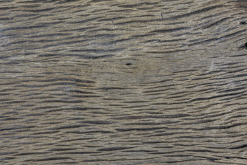 Wood texture background.  wood texture for design and decoration. Wood texture  for copy space. wooden for text.