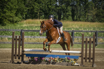 Woman and chestnut gelding over plank jump