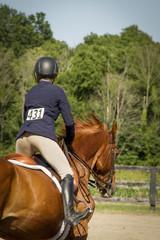 Woman riding away on chestnut gelding