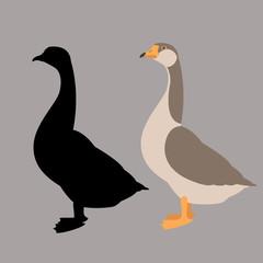 goose vector illustration flat style  silhouette black profile