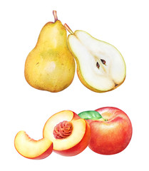 Collection of hand drawn watercolor pears and peaches isolated on white background.