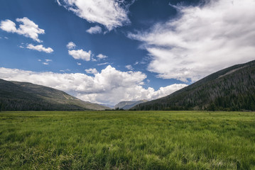 Scenic view of green landscape against sky at Rocky Mountains National Park