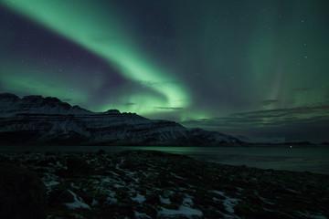 auror boreal