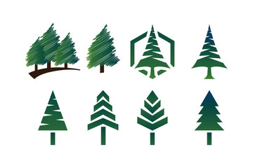 Collection of green pine tree template vector