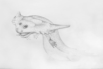 Diplocaulus. Portrait of amphibian. Paleontological illustrations.