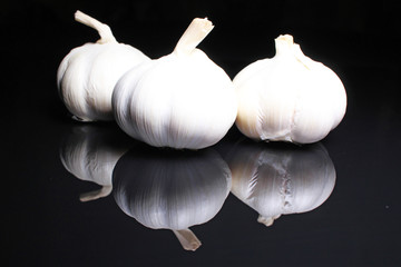 Garlic on black reflective studio background. Isolated black shiny mirror mirrored background for every concept.