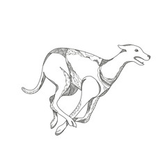 Doodle art illustration of a greyhound dog running racing viewed from side  in black and white done in mandala style.