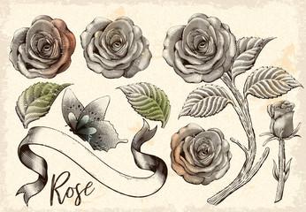 Retro roses decorative elements set