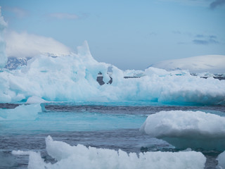 Several icebergs in aquamarine and light blue floating in the deep blue water of the Southern Ocean in Antarctica.
