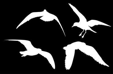 set of four gull white silhouettes