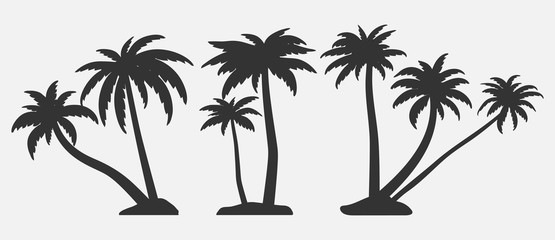 Tropical trees for design about nature.   Set of palm trees silhouettes. Vector illustrations isolated on white background.