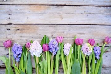 Frühlingsblumen - Blumengrüße - Hyazinthen und Tulpen