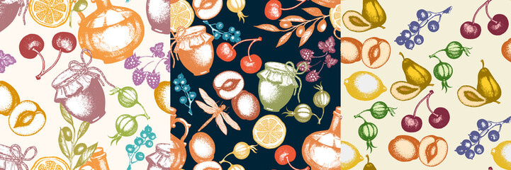 Three harvest time fresh fruits and berries seamless pattern hand drawn vector. Traditional Harvest festival decoration. Retro garden seamless pattern