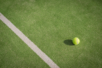 Paddle tennis court and ball